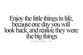 Quotes About Living Life Delectable Life Quotes Enjoy The Little Things In Life Quotes On Living Life