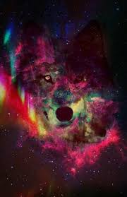galaxy tumblr hipster wolf. Brilliant Wolf I Love Hipster Wolves And This Us My Favoruit It Is Truly A Piece Of Art Intended Galaxy Tumblr Hipster Wolf P