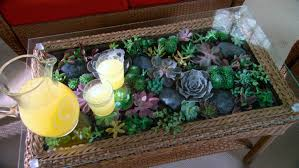 Video: Learn & Do: How to Make a Terrarium Coffee Table | Martha Stewart