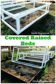 raised garden cover bed covers vegetable best images about gardening enclosure on