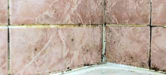 how to get rid of black mould in bathroom