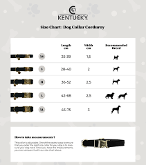 Collar Size Chart Dog Collar Corduroy Brown L42 68cm