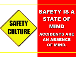 Safety Quotes Extraordinary Safety Quotes