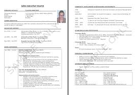 Executive Resume Builder Sales Pdf Free Download ... Sample Photo ...