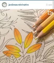 colorir color secret garden jardim secreto coloring tips coloringcoloring bookscolouringcoloured