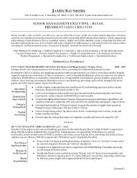 Ceo Resume Template Resume Examples Sample Bio Ceo Cv Template Doc