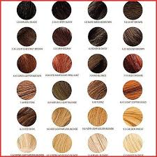 Chi Tone And Shine Color Chart Chi Ionic Permanent Shine Hair Color Chi Ionic Permanent