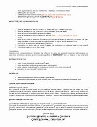 48 Nursing Resume Samples For New Graduates Jscribes Com