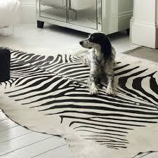 brown zebra print area rug designs