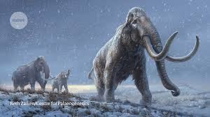 Million-year-old mammoth genomes shatter record for oldest ancient ...