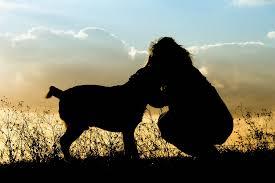 「犬と人 フリー素材」の画像検索結果