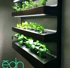 herb wall garden ideas medium of distinguished kits by is indoor vertical diy ide indoor wall garden kitchen herb gardens