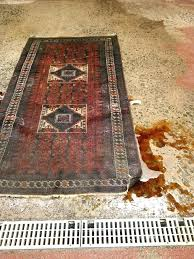 persian rug cleaning photos for rug cleaning persian rug cleaning cost