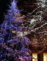 christmas tree lighting ideas. Outside Tree Lights Light Ideas Inspiration Blue Snow Bay Solar . Christmas Lighting I