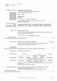 Microsoft Word Resume Template Free Free Microsoft Word Resume Templates RESUME 93