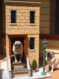 air conditioning dog house. \ air conditioning dog house