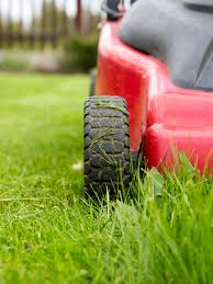 what is the ideal height to cut the grass diy what is the ideal height to cut the grass