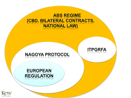 abs nagoya protocol update horticultural perspective plantnetwork join