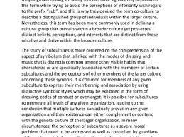culture essay cultural identity essay gabriella ponce org culture and society essay