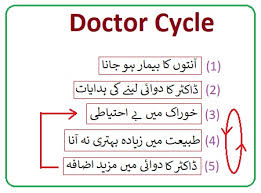 Celiac Disease Diet Chart In Urdu How Does Scd Diet Heals Intestinal Ulcers Pak Project