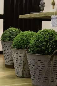 Garden Pots 340 Best Garden Planters Pots Vases Urns Images On Pinterest