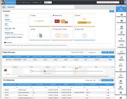 Clarizen Use Case 1 Reporting Visualize Clarizen Projects