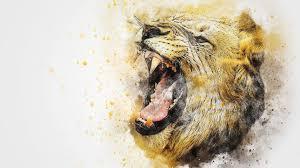lion roar hd wallpaper