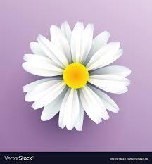 Daisy Paper Flower Realistic Paper Daisy Flower