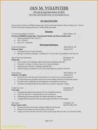 What Should Go On A Resume Cool Ats Friendly Resume Cheerful What Should Go A Resume Fresh Examples