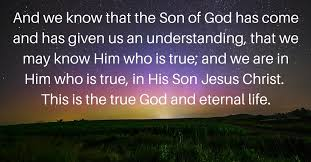 Daily Bible Quotes Fascinating Truth Bible Daily Bible And Verses