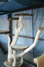awesome outdoor cat furniture for idea for making an outdoor cat tree 37 outdoor cat furniture