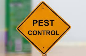Mengenal Apa Itu Pest Control - Penampilan Kita