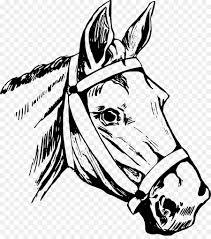 quarter horse head clip art. Wonderful Horse Horse Head Mask American Quarter Clip Art  Horse Riding In Head Art