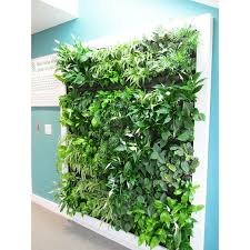 living green wall with framing