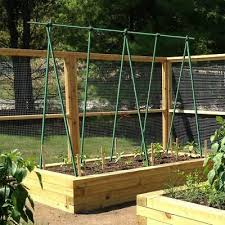 plant stakes garden stakes green