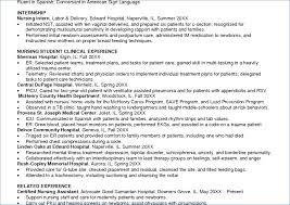 Nursing Curriculum Vitae Example Resume Example