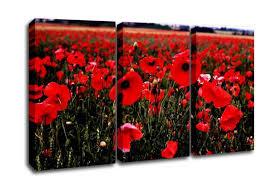 red poppy field hills flowers 3 panel