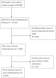 Pathophysiology Of Pyelonephritis In Flow Chart The Climate Impact On Female Acute Pyelonephritis In Taiwan