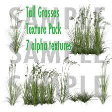 tall grass texture. FULL PERM 7 Tall Grass Alpha Textures Texture