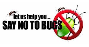 pest control spring hill fl. Modren Control Home Pest Control In And Near Spring Hill Florida And Fl M