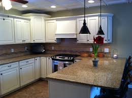 Omega Dynasty Kitchen Cabinets Omega Kitchen Cabinets Reviews Monsterlune