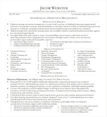 Executive Resume Templates Word Executive Resume Templates Word Print Executive Resume Template For 16