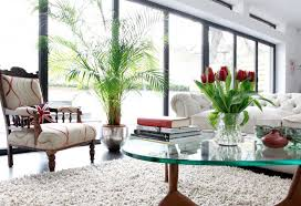 this is the related images of Decorative Plants For Living Room