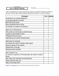 Multiple Choice Comprehension Worksheets Math Reading Passages Set ...