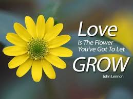 Love Flower Quotes Impressive Love Flower Quotes Unique 48 Flower Quotes Lovequotesmessages