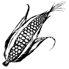 夏の食べ物トウモロコシ黒イラスト No 1480522無料イラストなら