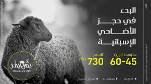 البدء في حجز أضاحي العيد 2019