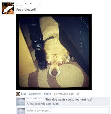 30 Best Facebook comments ever... - Album on Imgur