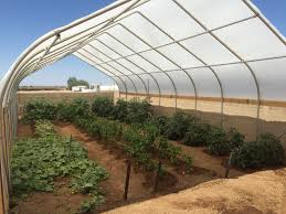 customer photo sole greenhouse