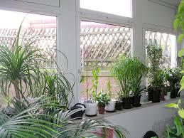 Kitchen Window Herb Garden Kit Similiar Inside Herb Window Box Keywords